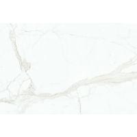 DOLMAGCAL60120-6AP - Magnifica Slab - Calacatta Super White