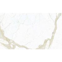 DOLMAGCAL60120-6P - Magnifica Slab - Calcatta Super White