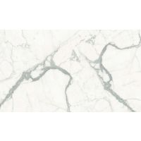 DOLMAGSTA60120-6P - Magnifica Slab - Statuario Super White