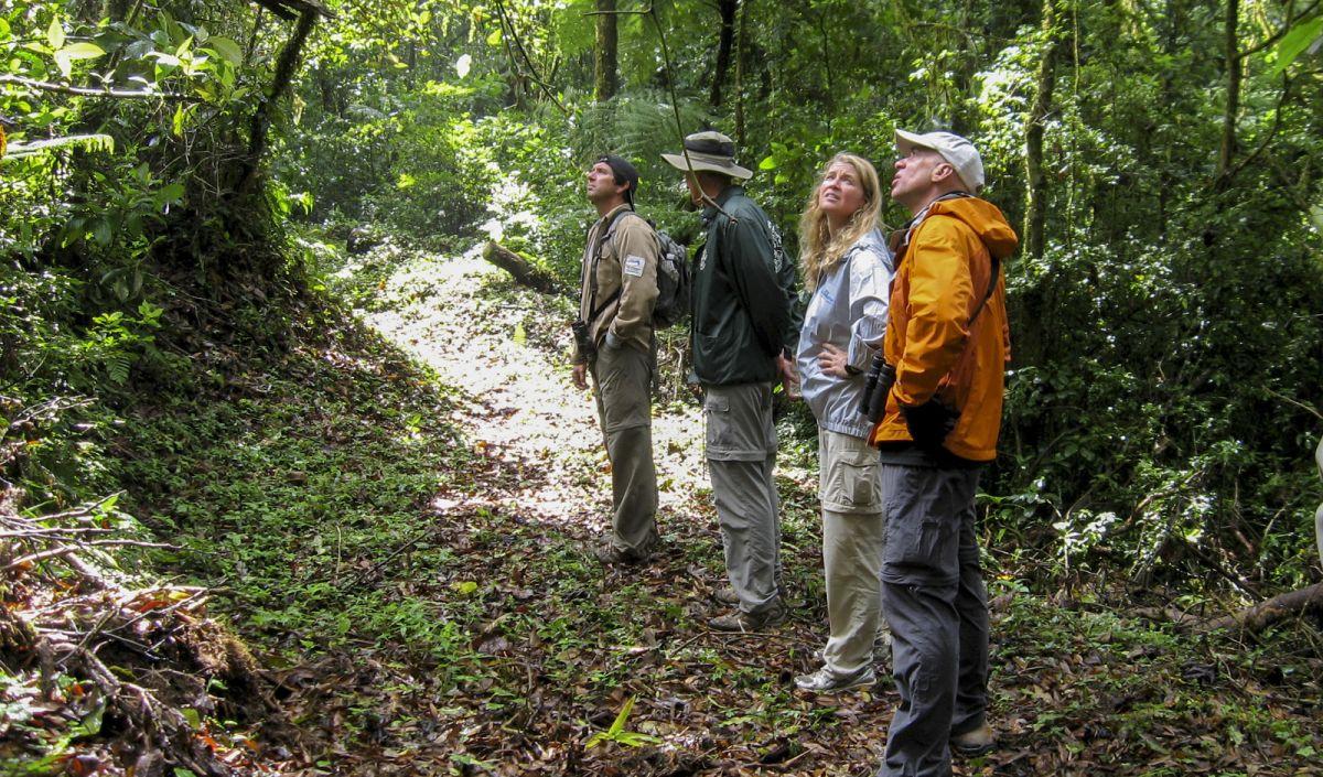 El Triunfo Birding Tours