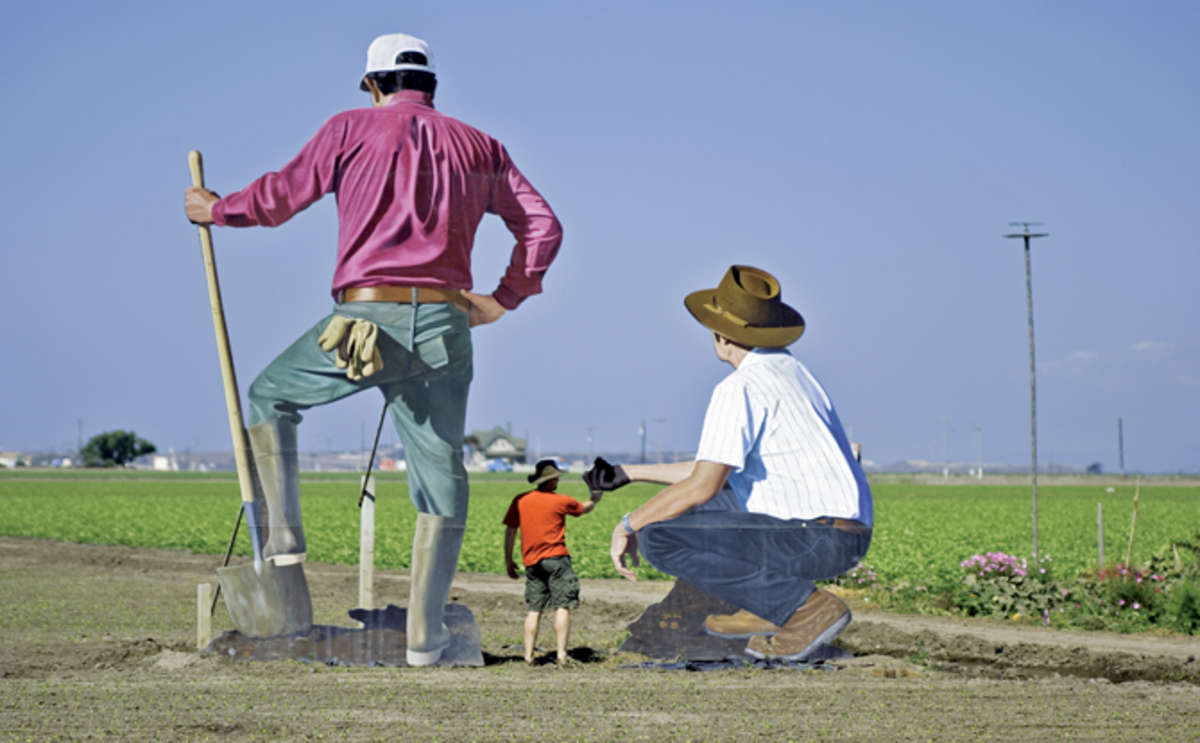 Sculptures at The Farm, Salinas Valley