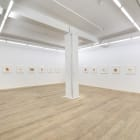 Michael Wang, 2013, installation view, Foxy Production, New York