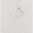 Hany Armanious, Untitled, 2007, hair on paper, 42 x 31 in. (107 x 78 cm.) HA_FP1014