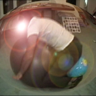 Hany Armanious, Dung Beetle Realigning the Planets, 2003, still from video, dimensions variable / 2 min. 39 sec. Edition of 5