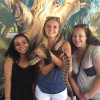 A student studying abroad with CAPA The Global Education Network: Sydney Study or Intern Abroad