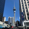A student studying abroad with API (Academic Programs International): Auckland - AUT University