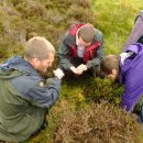 Study Abroad Reviews for Adelante: Edinburgh - Ecological Conservation Summer Program in Scotland