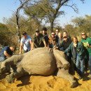 Study Abroad Reviews for Eko Tracks: Veterinary Field Study in South Africa