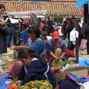 Study Abroad Reviews for Spanish Abroad, Inc: Spanish Schools in Bolivia