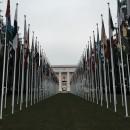 Boston University: Geneva - Internship Program Photo