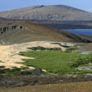Study Abroad Reviews for IES Abroad: Galápagos Islands Direct Enrollment - GAIAS