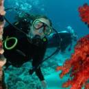 Study Abroad Reviews for Broadreach: Traveling - Bali & Lombok Advanced Scuba