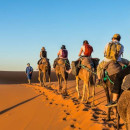 Study Abroad Reviews for Broadreach: Multiple - Spain & Morocco Multimedia Studies
