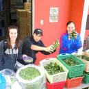 Study Abroad Reviews for Volunteer Guatemala Xela: Medical Program