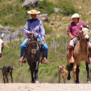 Study Abroad Reviews for United Planet: Volunteer Abroad in Argentina - 6 or 12 months
