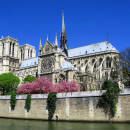 Study Abroad Reviews for Stephen F. Austin State University (SFA): The French Mystique - The Architecture, Gardens, and Culinary Delights of France