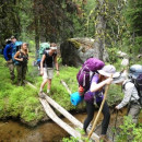 Study Abroad Reviews for Wildlands Studies: TheYellowstone Project: Threatened And Sensitive Species