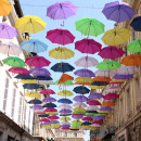 Study Abroad Reviews for The Experiment: France: Fine Arts & Photography