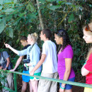 Study Abroad Reviews for Associated Colleges of the Midwest (ACM): Costa Rica - Field Research in the Environment, Social Sciences, & Humanities
