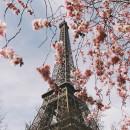 Study Abroad Reviews for IES Abroad: Paris – Studio Art, Dance & Music