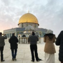 Study Abroad Reviews for Wafid Arabic Institute: Amman - Summer Arabic Intensive
