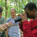 Study Abroad Reviews for Organization for Tropical Studies (OTS): San Jose - Tropical Biology on a Changing Planet