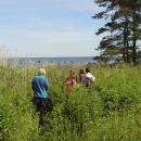 Study Abroad Reviews for Youth For Understanding (YFU): YFU Programs in Estonia