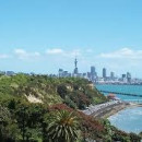 Study Abroad Reviews for Boston University: Auckland - Internship Program