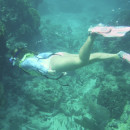 Study Abroad Reviews for SUNY Geneseo: Traveling - Belize Biodiversity