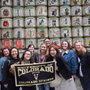 Study Abroad Reviews for University of Colorado Colorado Springs: Business Studies in Japan, Hosted by the Asia