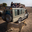 Study Abroad Reviews for MEI High School Study Abroad: Expedition to Tanzania