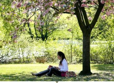 Study Abroad Reviews for University of Stirling: Stirling - Direct Enrollment & Exchange
