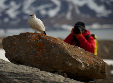 Study Abroad Reviews for GEO: Svalbard - Study Abroad Programs in Svalbard