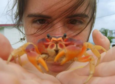 Study Abroad Reviews for Broadreach: San Salvador - Bahamas Marine Biology