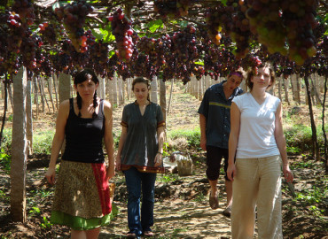 Study Abroad Reviews for IISAC: Summer In Kerala