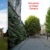 Photo of University of Otago: Dunedin - Direct Enrollment & Exchange