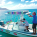 Photo of Broadreach: Programs at Sea - Caribbean PADI Divemaster