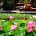 Photo of CET Kunming