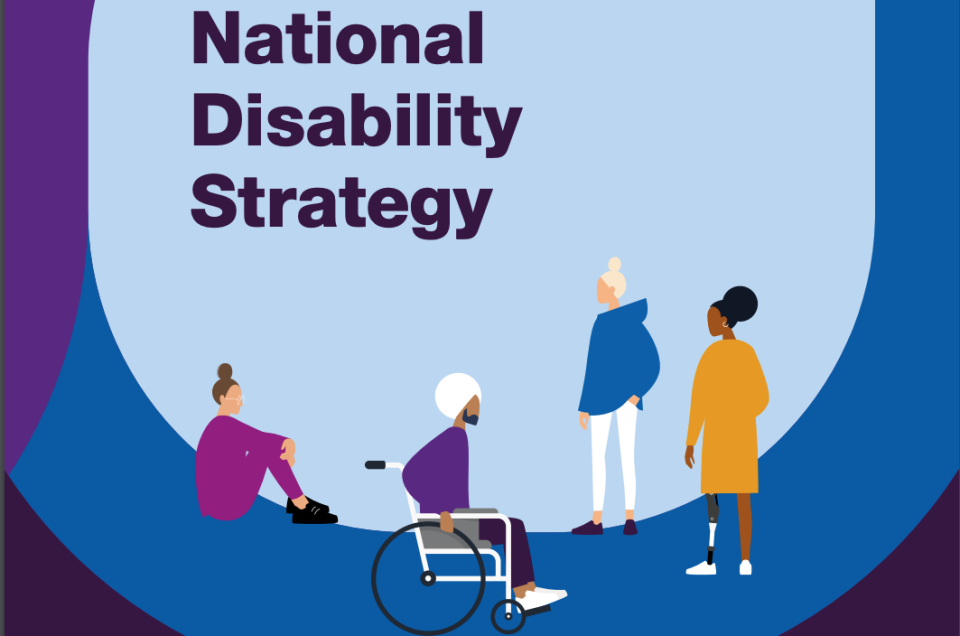 Opinion on the Government National Disability Strategy