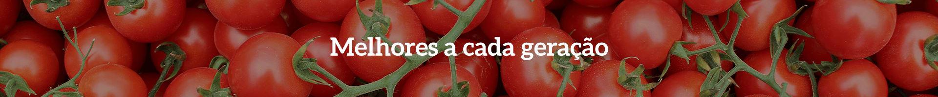 Tomates Seminis