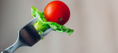 What are plant based diets uxkhqp