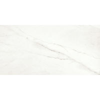 DOLMAGLIN60120FBP - Magnifica Slab - Lincoln Super White