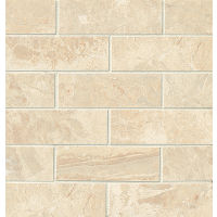 "Classic 2"" x 6"" Floor and Wall Mosaic in Cremino"