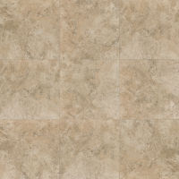 "Fantasia 20"" x 20"" x 3/8"" Floor and Wall Tile in Beige"