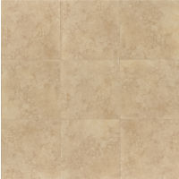"Roma 12"" x 12"" x 3/8"" Floor and Wall Tile in Beige"