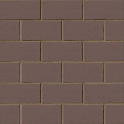 "Costa Allegra 3"" x 6"" Floor & Wall Tile in Timber"