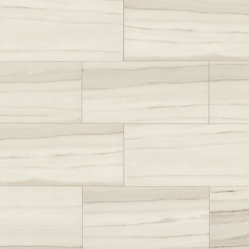 "Zebrino 12"" x 24"" Floor & Wall Tile in Michelangelo"