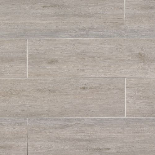"Titus 8"" x 48"" Floor & Wall Tile in Gray"