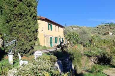 Mysigt våning i hus med stor olivlund och solterrass