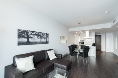 Furnished 1-bedroom condo at Saint-Maurice
